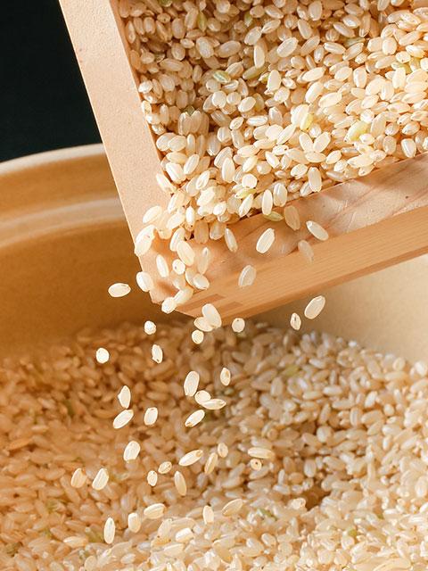 米,玄米,お米,コシヒカリ,ゆめみづほ,ひゃくまん穀